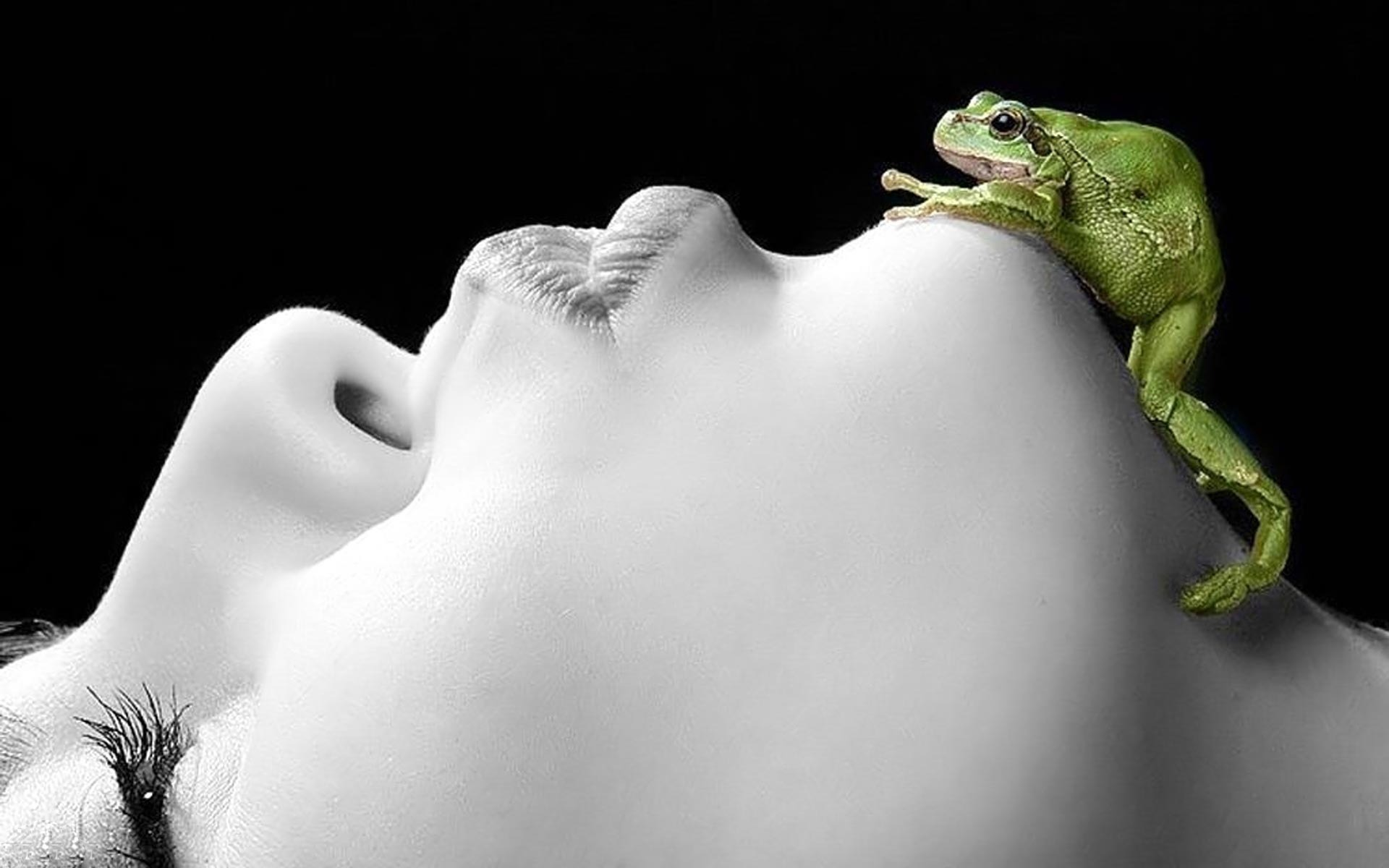 Lonely No More Romeo The Sehuencas Water Frog Finds Love