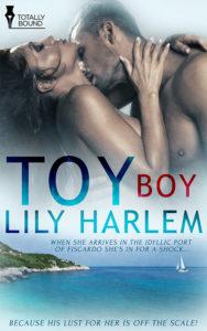Toyboy_book
