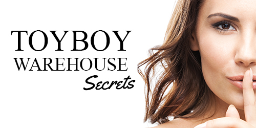 Have you confessed on Toyboy Warehouse Secrets?